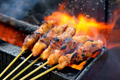 Delicious Asian Cuisine, Malaysia Chicken Satay Stock Photos