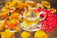 Delicious autumn tea in a beautiful glass bowl on a table Royalty Free Stock Photos
