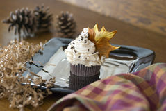 Delicious Autumn Themed Cupcake. A chocolate cupcake with vanilla cream frosting and chocolate jimmy sprinklies featuring a fondant maple leaf in the frosting Royalty Free Stock Photo