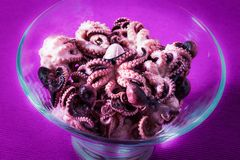 Delicious baby octopus marinated in wine vinegar in the glass bowl on the old wooden table, close-up Royalty Free Stock Images