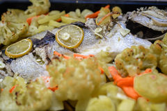 Delicious baked atlantic cod with lemon served Royalty Free Stock Image