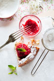Delicious baked cheesecake. Delicious freshly baked cheesecake with raspberry coulis on top and mint Stock Images