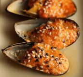 Delicious baked mussles Stock Photos