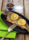 Delicious baked rainbow trout with lemon straight from the oven Royalty Free Stock Photos