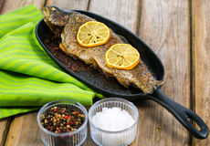 Delicious baked rainbow trout with lemon straight from the oven Stock Image