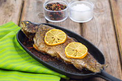 Delicious baked rainbow trout with lemon straight from the oven Stock Photography