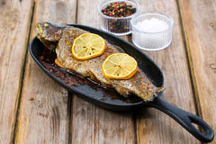 Delicious baked rainbow trout straight from the oven with lemon Royalty Free Stock Photo