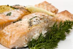 Delicious baked salmon Stock Photography