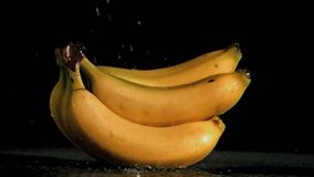 Delicious bananas in super slow motion being soaked stock video