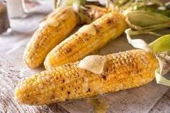 Grilled Corn on the Cob. Delicious barbecue grilled corn on the cob with salt, pepper and melted butter royalty free stock images