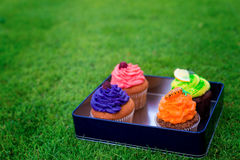 Delicious, beautiful cakes in a box. Picnic at bachelorette part Stock Image