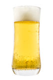 Delicious beer in glass Stock Photo
