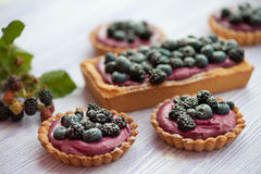 Delicious berries tarts Royalty Free Stock Photography