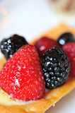 Delicious berry tart dessert Stock Images