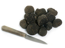 Delicious black truffles royalty free stock images