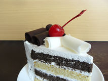 Delicious black and white chocolate cake. Stock Images