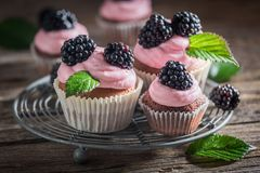Delicious blackberry cupcake made of cream and fruits Royalty Free Stock Photography
