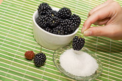 Delicious blackberry dessert Stock Images