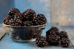 Delicious blackberry fruits in glass bowl Royalty Free Stock Images