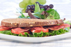 Delicious blt sandwich. Fresh healthy and nutritious sandwich ,perfect all occasion meal Royalty Free Stock Image