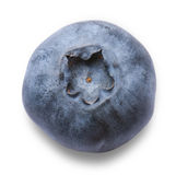 Delicious blueberry Stock Image