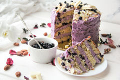 A delicious blueberry cake in the cut. Delicious blueberry cake with cream cheese and fresh blueberries Royalty Free Stock Image