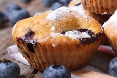 Delicious blueberry muffins with icing sugar on a wooden table Stock Photo
