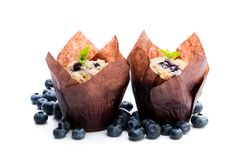 Delicious blueberry muffins isolated on white royalty free stock image