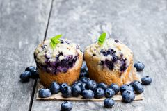 Delicious blueberry muffins on wooden table royalty free stock photography