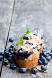 Delicious blueberry muffins on wooden table royalty free stock image