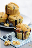 Delicious blueberry, oatsmeal and buttermilk muffins Stock Image