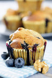 Delicious blueberry, oatsmeal and buttermilk muffins Stock Photos
