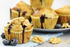 Delicious blueberry, oatsmeal and buttermilk muffins Stock Photography