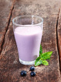 Delicious blueberry yoghurt smoothie Stock Image