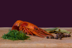 Delicious boiled crayfish with dill, pepper and bay leaf Stock Photo