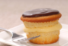 Delicious Boston Cream Cupcake Stock Photo