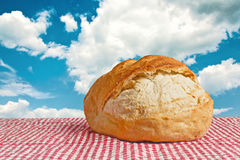 Delicious bread bun on picnic table Royalty Free Stock Image