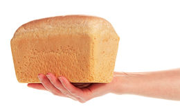 Delicious bread in hand Royalty Free Stock Photography