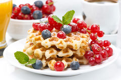 Delicious breakfast with Belgian waffles and berries, close-up Royalty Free Stock Photography