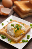 Delicious breakfast. Eggs benedict with ham on toast. Stock Images