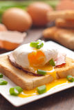 Delicious breakfast. Eggs benedict with ham on toast. Stock Photography