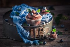Delicious brown cupcake made of cream and fresh fruits Stock Images