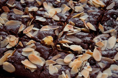Delicious brownie Royalty Free Stock Photography