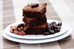 Delicious brownie Royalty Free Stock Image