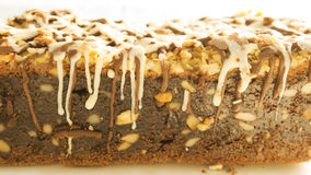 Delicious brownie Royalty Free Stock Photo