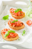 Delicious bruschetta with tomato and basil for breakfast Royalty Free Stock Image