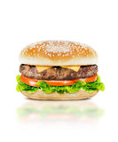 Delicious burger Stock Image