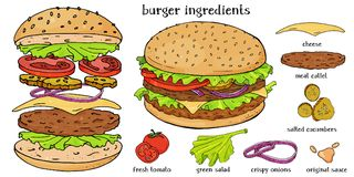 Delicious Burger and its ingredients on a white background. Sandwich with fresh herbs, onions and juicy patties. Colorful vector illustration in sketch style Royalty Free Stock Photo