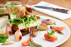 Delicious burger served on white plate with onions, tomatoes, arugula and rye bread. Knife in background for cutting the meal. Stock Image