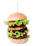 Delicious burger Royalty Free Stock Photo